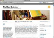 The Blind Swimmer blog